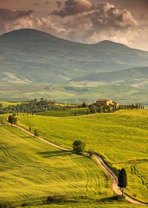 Tuscan hills :: My Italian Treasures & Elizabeth Namack, tour operator